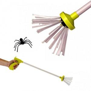 Spinnen Fänger