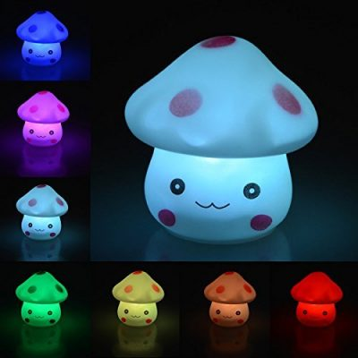 Leucht Pilz