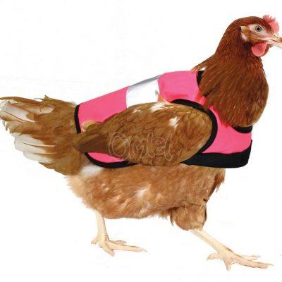 Hühner Warnweste